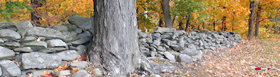 Fall stone wall template
